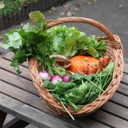 Panier de légumes / fruits d'hivers - Agriculture biologique