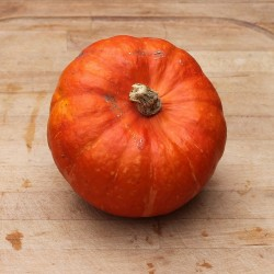 Potimarron orange la pièce - Le Potager d'Olivier