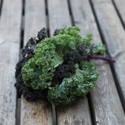 Bouquet de Kale rouge et noir ~250g - Le Potager d'Olivier